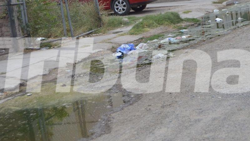 Navojoa: Aguas negras en el fraccionamiento Infonavit, un foco de infección en vecinos