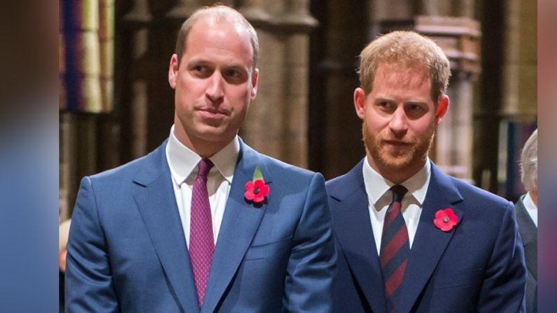 """""""Furioso"""", Príncipe William habría atacado y 'echado' al Príncipe Harry de su hogar"""