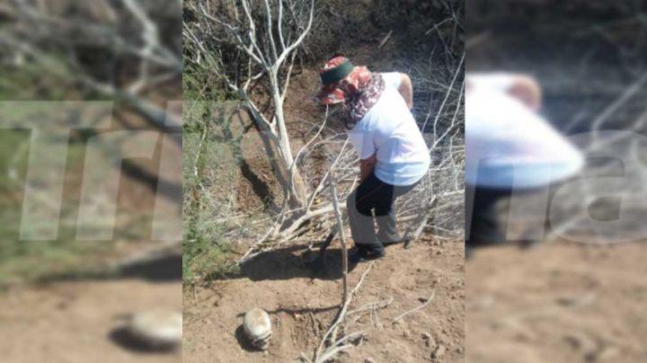 El colectivo Guerreras Buscadoras encuentra nueva osamenta en Cajeme