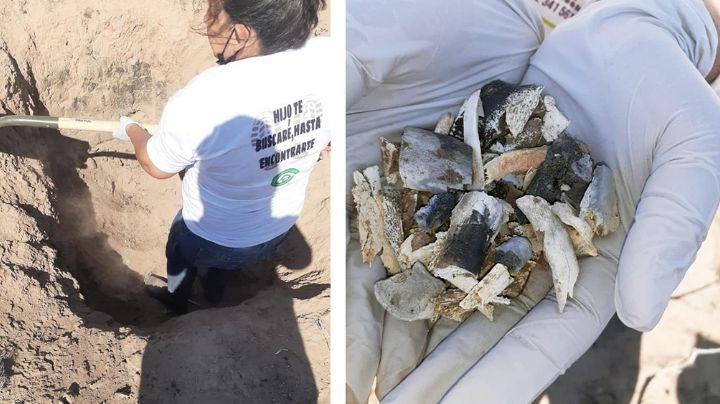 Sonora: Descubren restos humanos sepultados en fosa clandestina de Villa Juárez