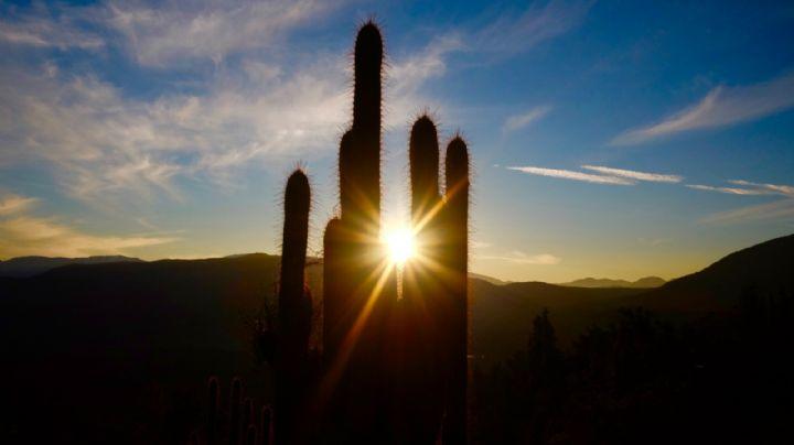 ¡Anótalo! Pronóstico del clima y el tiempo para Sonora de este lunes 12 de julio del 2021