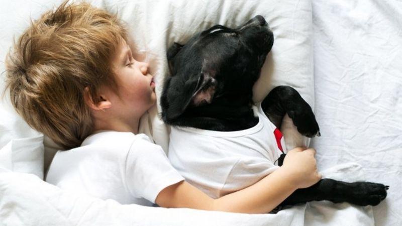 Niños que duermen con sus perros tienen un mejor descanso, según estudio