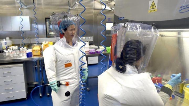 ¿El Covid-19 fue creado en un laboratorio? Hallan posible prueba definitiva del año 2015