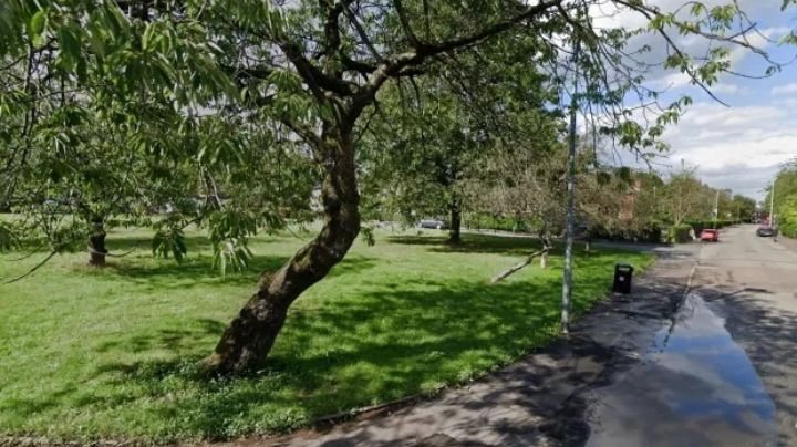 Brutal abuso: Joven de 17 años esperaba a su amiga en el parque; la someten y la violan