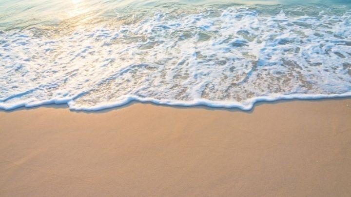 Día Mundial de los Océanos: Descubre las acciones que puedes hacer para cuidar de los mares
