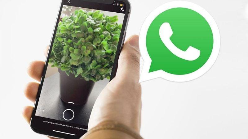 ¿La cámara de tu WhatsApp tiene bastante zoom sin aplicarlo? Esto puede ayudar a solucionarlo