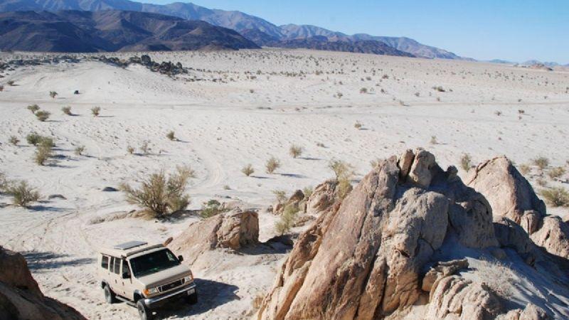 Horrible final: Una mujer muere en el desierto; encuentran su cuerpo entre la maleza