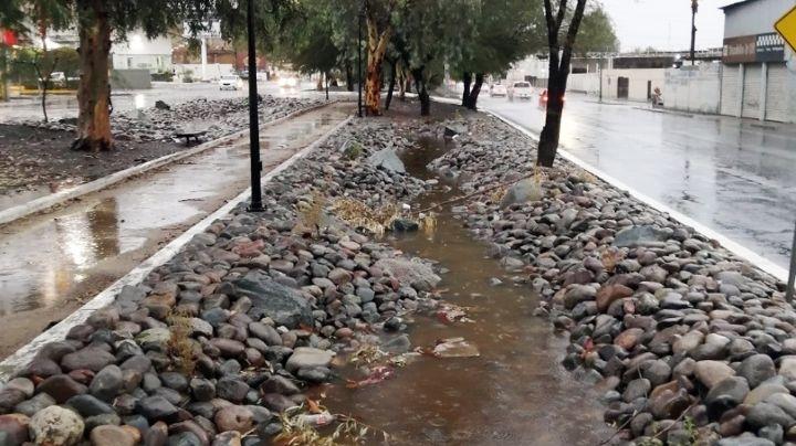 Hermosillo: Construyen ríos secos para captar agua de lluvias y mantener áreas verdes