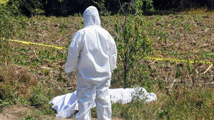 Semidesnuda y decapitada, mujer es localizada en predio; no hay detenidos por el feminicidio