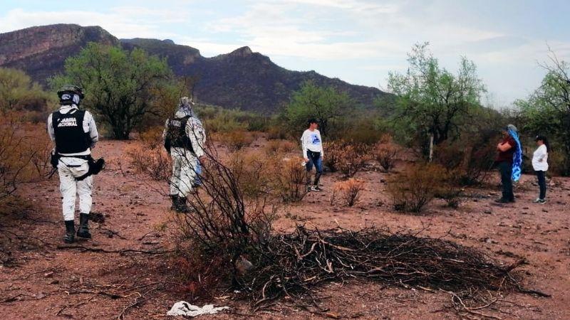 Localizan nuevos restos humanos en predio de Guaymas; fueron totalmente calcinados