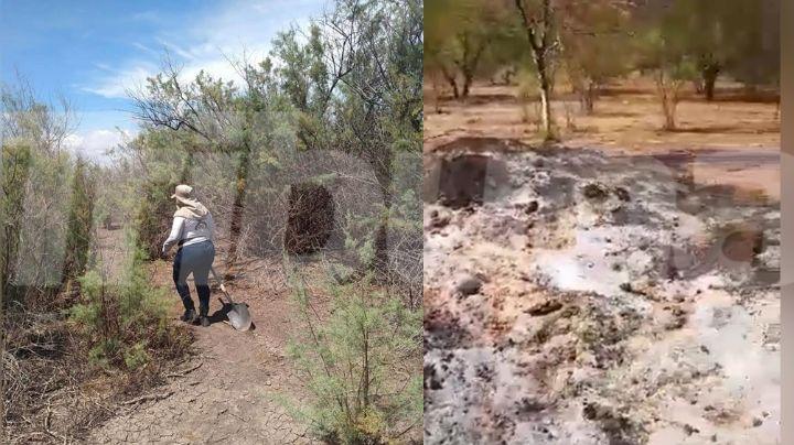 Guaymas: Buscadoras localizan tres fosas clandestinas con restos calcinados en el Poblado de Ortiz