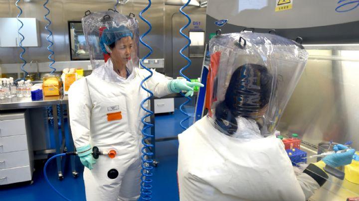 Pese a que no descarta la teoría del laboratorio, la NIH dice que el Covid pudo venir de un animal