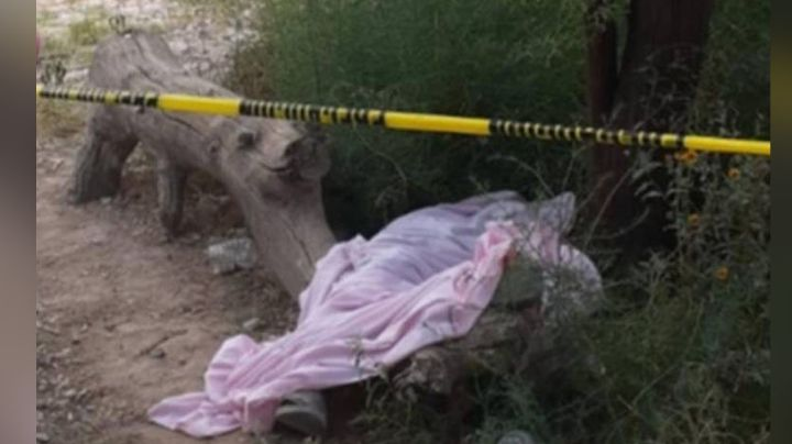 Terrible final: Hombre fallece mientras se alcoholizaba con sus amigos debajo de un árbol
