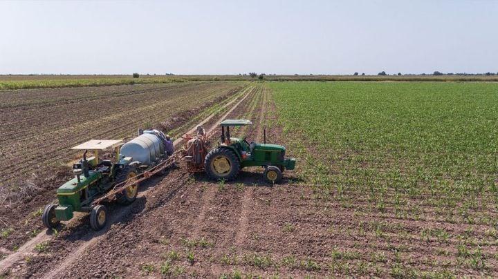 Agroindustria se convierte en un 'motor' esencial para el desarrollo económico