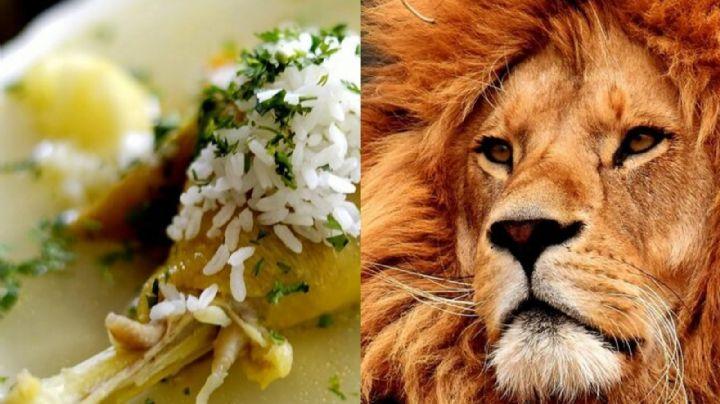 Tras dar positivo a Covid-19, los leones y tigres de un zoológico comen ¿caldo de pollo?